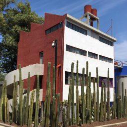 Conoce la oferta del Museo Casa Estudio Diego Rivera para el verano
