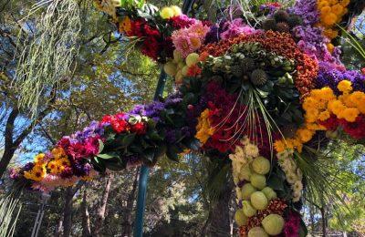 Comienza exposición de piñatas florales