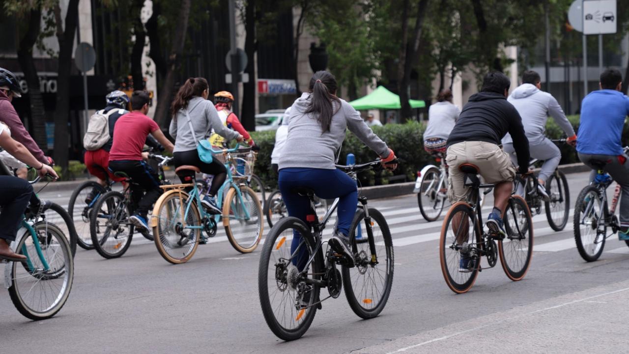 Sedema regalará placas reflejantes para bicicletas