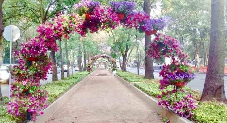 arcos florales son instalados en Paseo de la Reforma
