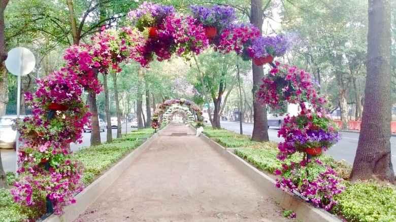 72 arcos florales son instalados en Paseo de la Reforma