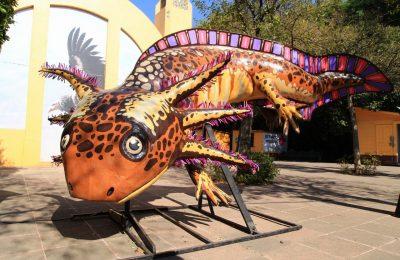 Llega exposición de alebrijes a zoológicos de la CDMX