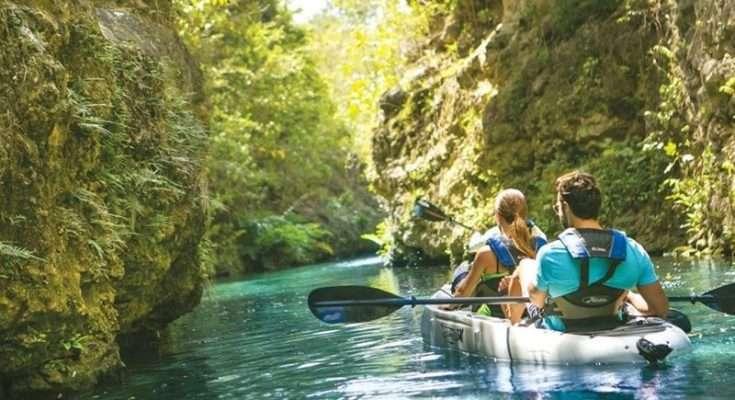 Airbnb, WWF México y Fematur promueven el turismo sostenible