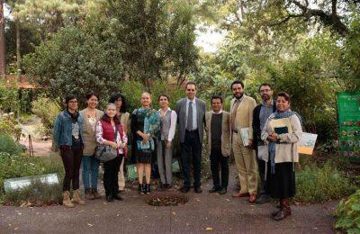 Busca Sectei preservar el patrimonio natural urbano con Reto Verde