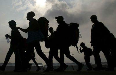 Cierra 2019 con 100 millones de trámites migratorios: INM