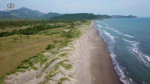 Desarrollos sustentables en favor de las áreas protegidas