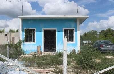 Emiten recomendaciones para mitigar impacto negativo del Tren Maya