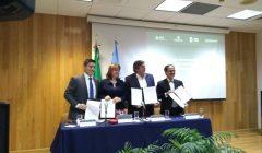 ONU-Habitat detonará ordenamiento territorial en la zona del Tren Maya