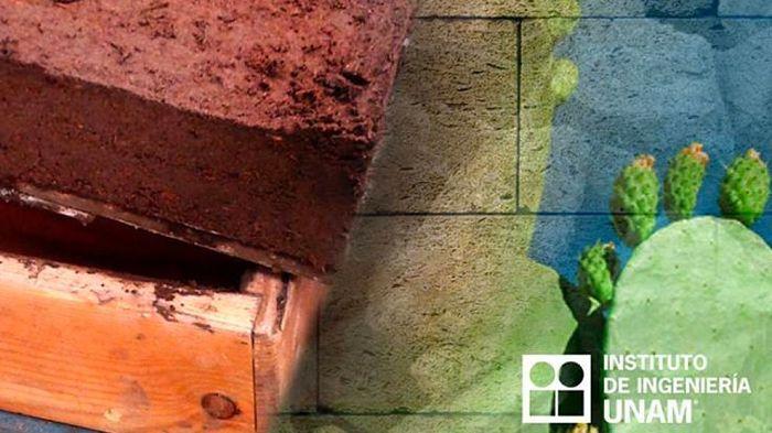 Ingenieros de la UNAM crean eco-ladrillos