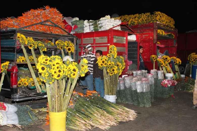"""Invitan a las """"Noches de Plaza"""" en la Central de Abasto CDMX"""