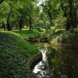Invitan a participar en el desarrollo del Jardín Escénico en Chapultepec