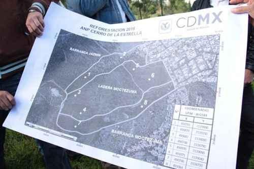 Iztapalapa alista plan de reforestación  para el Cerro de la Estrella 3