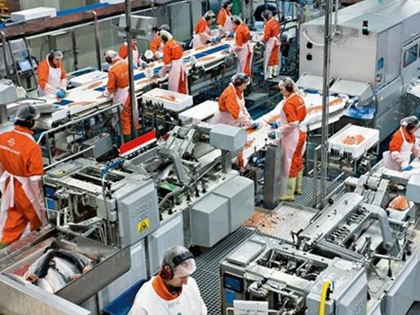 Jalisco se consolida como la región manufacturera y tecnológica del país