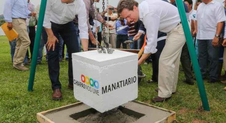 Manatiario en Chiapas ayudará a recuperar y proteger a esta especie