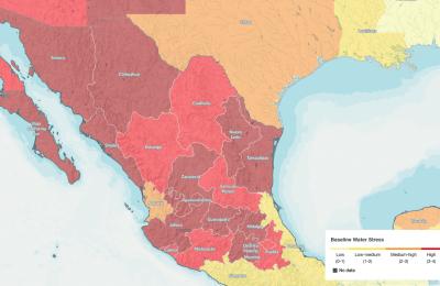 discuten-papel-de-municipios-en-crisis-sanitaria-de-covid-19