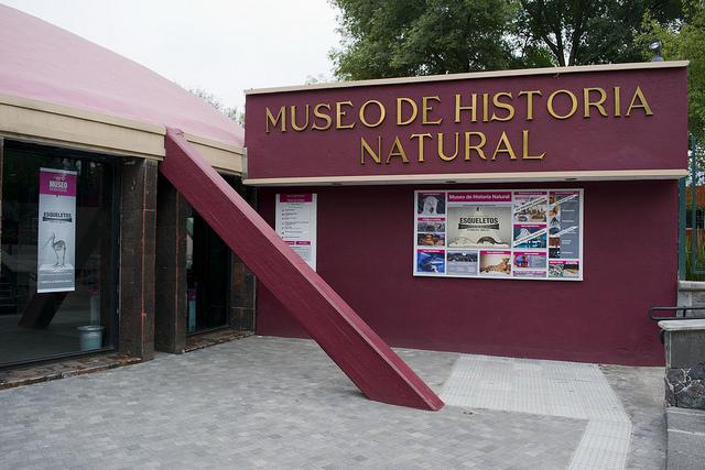 Museo de Historia Natural abre sus puertas a la Noche de Museos