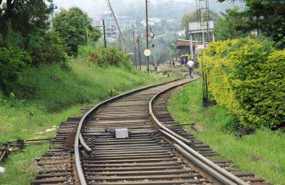 sedatu-y-fonatur-alistan-proyecto-de-desarrollo-del-tren-maya
