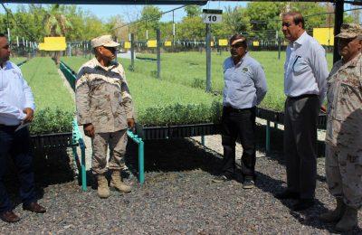 Aumenta producción vegetal para reforestación en Baja California Sur