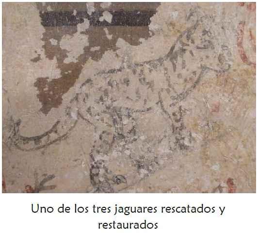 Rescate y restauración de los jaguarcitos de Zacatlán de las Manzanas 2