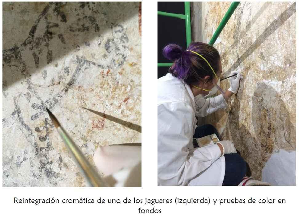 Rescate y restauración de los jaguarcitos de Zacatlán de las Manzanas 5