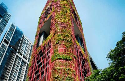 Exposición de ecosistemas urbanos llega al museo de la CDMX
