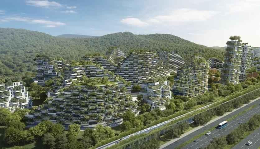 Planean construir Ciudad-Bosque en provincia china