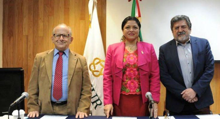 Tren Maya permitirá recuperar y preservar la historia del área maya: INAH