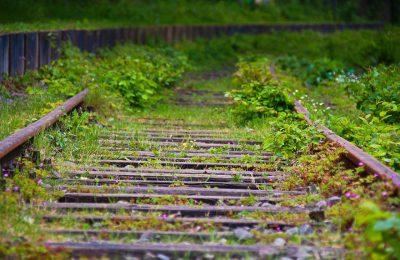 obras-del-tren-maya-no-estan-suspendidas-fonatur