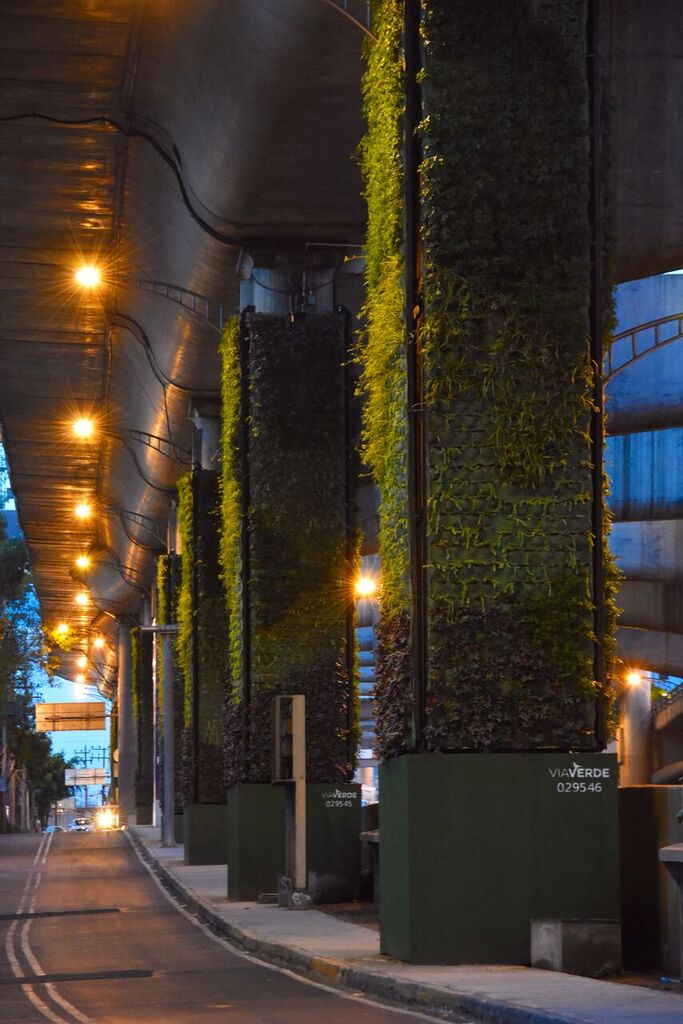 Avanza proyecto de jardines verticales en el Periférico