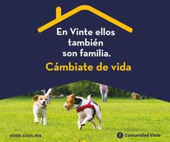 Banner inmobiliaria Vinte
