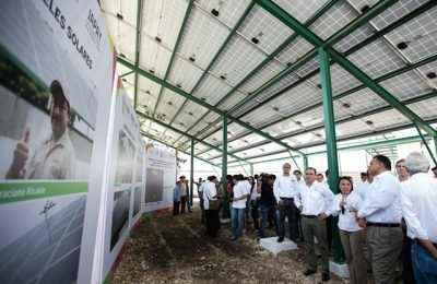 Gobierno de Yucatán presenta Plan de Gestión de Carbono