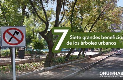 ONU-Hábitat enumera beneficios de árboles en zonas urbanas