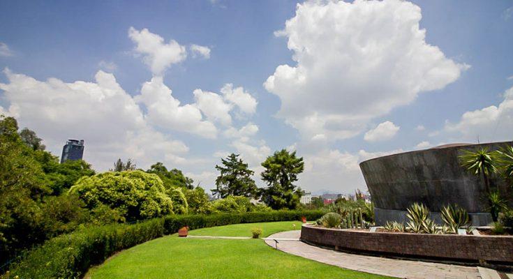 Buscan renovar azotea verde del Museo del Caracol