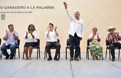 Licitación para Tren Maya iniciará próximo mes: AMLO
