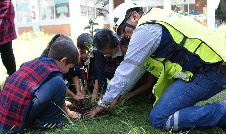 Cemex reforesta en Día Verde