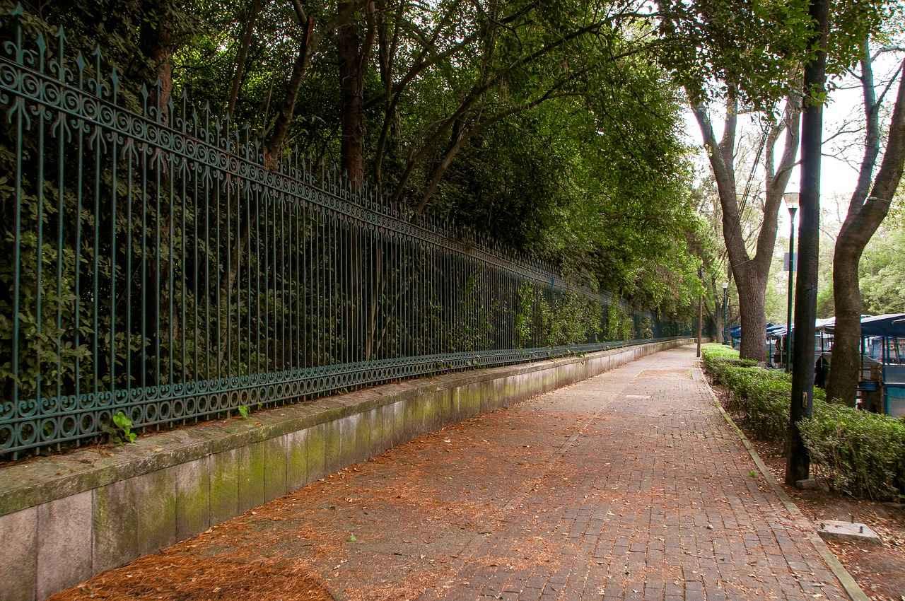 va-gcdmx-por-creacion-de-centro-de-cultura-ambiental-en-chapultepec