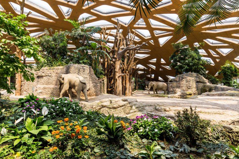 Galardonan arquitectura del Ecoparque Mendoza en Argentina