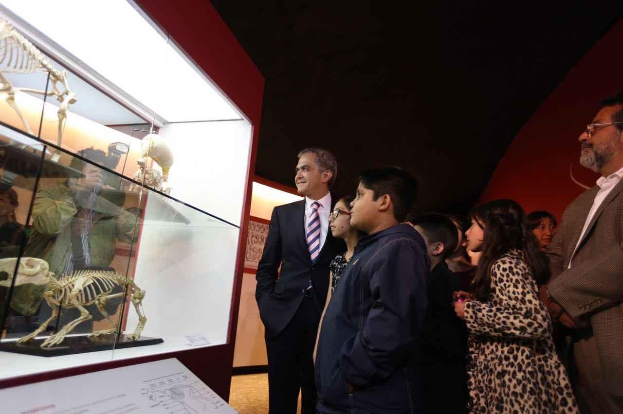 Inauguran exposición Esqueletos Evolución en Movimiento