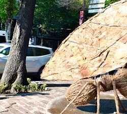 Muestra de Hormigas Gigantes en Reforma