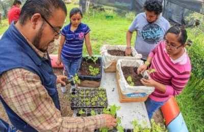 SEDEMA promueve huertos urbanos en CDMX