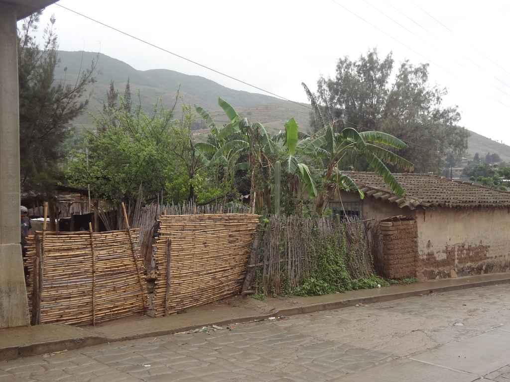 CIIDIR trabaja para viviendas en comunidades indígenas
