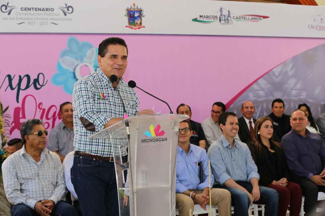 Planean desarrollo turístico en Michoacán
