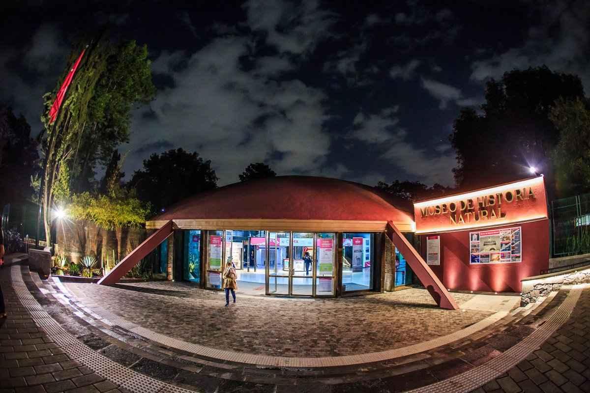 Museo de Historia Natural listo para Noche de Museos