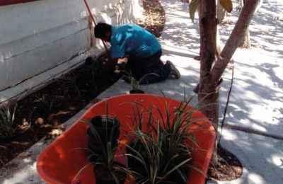Dan mantenimiento a parques en Oaxaca