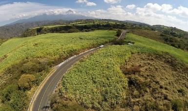 SCT capacitará a comunidades para que construyan sus propios caminos
