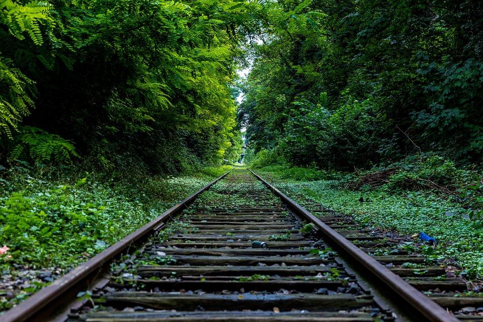 Proceso de Consulta del Tren Maya busca beneficiar a los implicados en su desarrollo